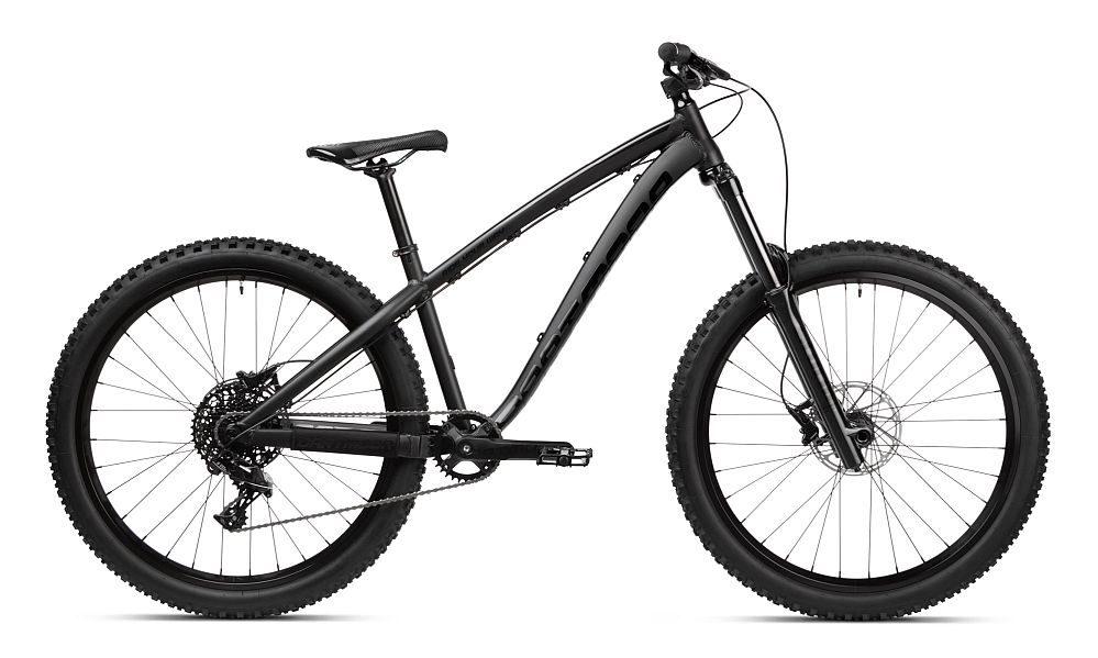 Dartmoor Hornet bike Black on Black